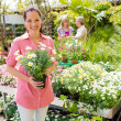 Woman shopping for flowers at garden center — Stock Photo