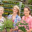 Women garden centre shop hold potted flower - Stockfoto