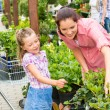 Mother daughter choosing flowers in garden shop - Foto Stock