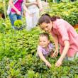 Mother daughter choosing flowers at garden center — Stock Photo