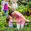 Mother daughter choosing flowers in garden center - Stok fotoğraf