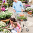 Garden center family shopping flowers — Stok fotoğraf