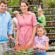 Family shopping flowers at garden center — Stok fotoğraf