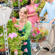 Garden center worker pushing flower shelves - Stock Photo