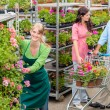 Garden center worker pushing flower shelves — Stock Photo #12060378