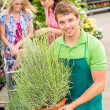 Garden centre worker hold potted plant — Stock fotografie