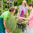Garden centre salesman offer potted plant - Foto Stock