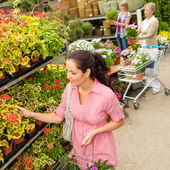 Woman choose potted flower in garden center — Stock Photo