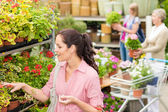 Woman choose potted flower in garden store — Stock Photo