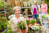 Garden centre senior lady hold potted flower — Stock Photo