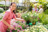 Florist arranging flower pots in garden store — Stock Photo