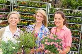 女性の園芸用品センター ショップ保持鉢植えの花します。 — ストック写真