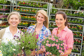Women garden centre shop hold potted flower — Stock Photo