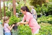 Garden center child mother shopping flowers plant — Stock Photo