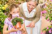 Garden shop child with grandmother smell cyclamen — Stock Photo