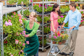 Garden center worker pushing flower shelves — Stock Photo