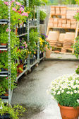 Garden centre green house with potted flowers — Stock Photo