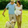 Happy couple walking dog on park lawn - Stock Photo