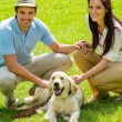 Young happy couple with Labrador dog — Stock Photo