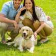 Young happy couple with Labrador dog — ストック写真