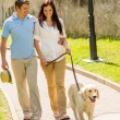 Young couple in love walking dog park — Stock Photo