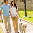 Royalty-Free Stock Photo: Young couple in love walking dog park