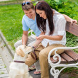 Young couple training dog in the park - Stock Photo