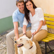 Happy couple with dog sitting yellow bench — Stock Photo
