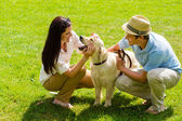Young happy couple playing with Labrador dog — Stok fotoğraf