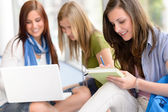 Group of teenage student study at high-school — Stock Photo