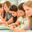 Students writing at high-school exam teens study — Stock Photo #12924924