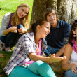 Students relaxing in schoolyard teens meadow park - Stock Photo