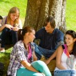 Students sitting in park talking smiling teens - Stockfoto
