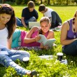Teens studying in park reading book students - Stockfoto