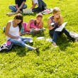 Students studying sitting in the park teens - Stock Photo