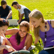 Teens studying in park reading book students - Foto Stock