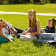 Teens sitting on lawn in park talking - 