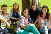 Students relaxing on meadow in park teens — Stock Photo