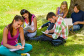 Students sitting in park studying reading writing — Stock Photo