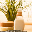 Spa green plant with cosmetic products stones - Stock Photo