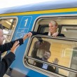 Stockfoto: Msaying goodbye to womon train