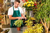 Man florist reading price barcode reader flower — Stock Photo
