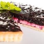 Blueberry pie fresh creamy cottage cheese dessert — Stock Photo #20381819