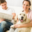 Resting joyful couple sitting and petting dog — Stock Photo