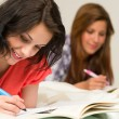 Young teenager girls studying on bed — Stockfoto #26753389