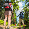 Stock Photo: Tourists with trekking poles from behind