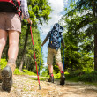Hikers walking with trekking poles — Stock Photo #27295625