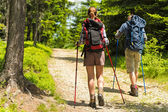 Hikers on path with trekking poles — Foto Stock