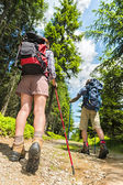 Tourists with trekking poles from behind — Stock Photo