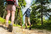 Hikers walking with trekking poles — Stock Photo